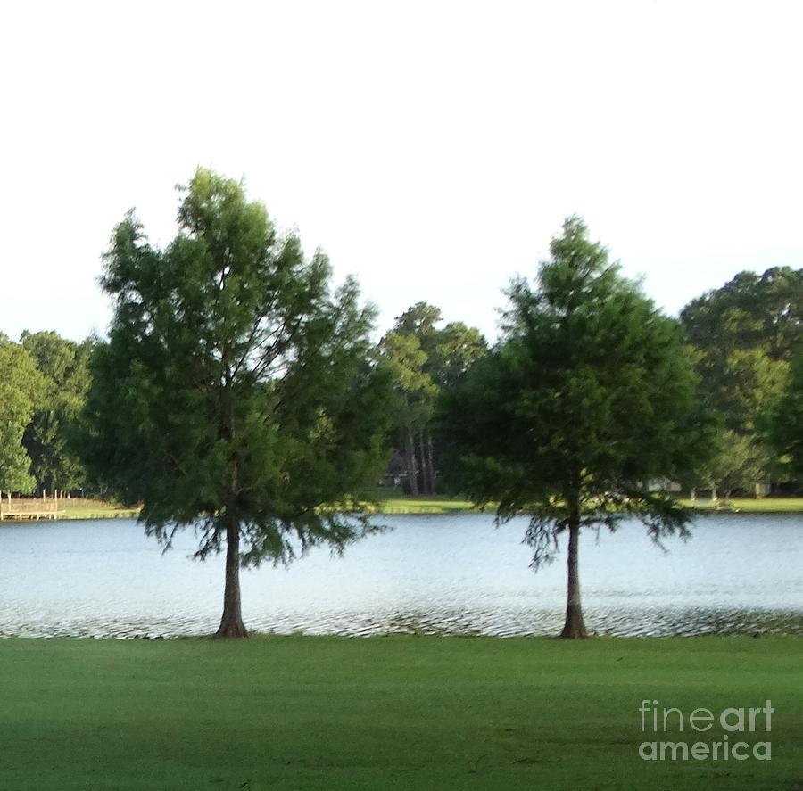 Serene Lake Photograph