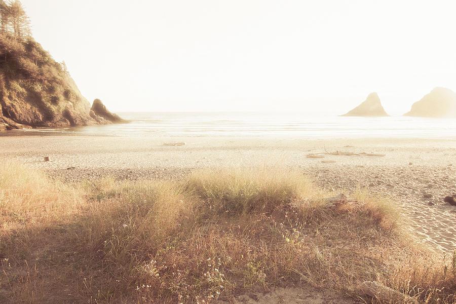 Serene Moment by Bonnie Bruno