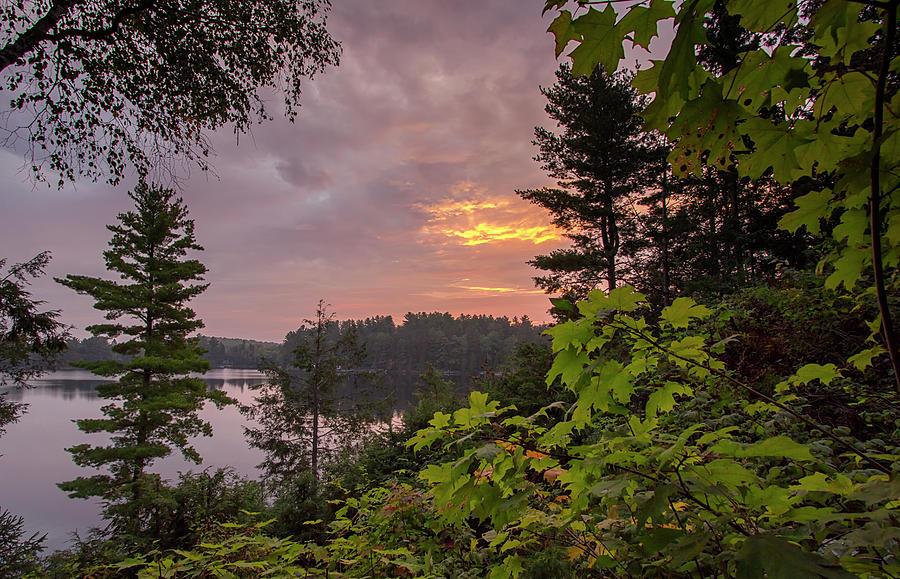 Serenity at Sunrise - Wollaston Lake - Ontario, Canada by Spencer Bush