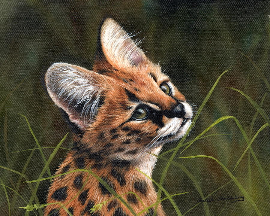 Kitten Painting - Serval Kitten by Sarah Stribbling