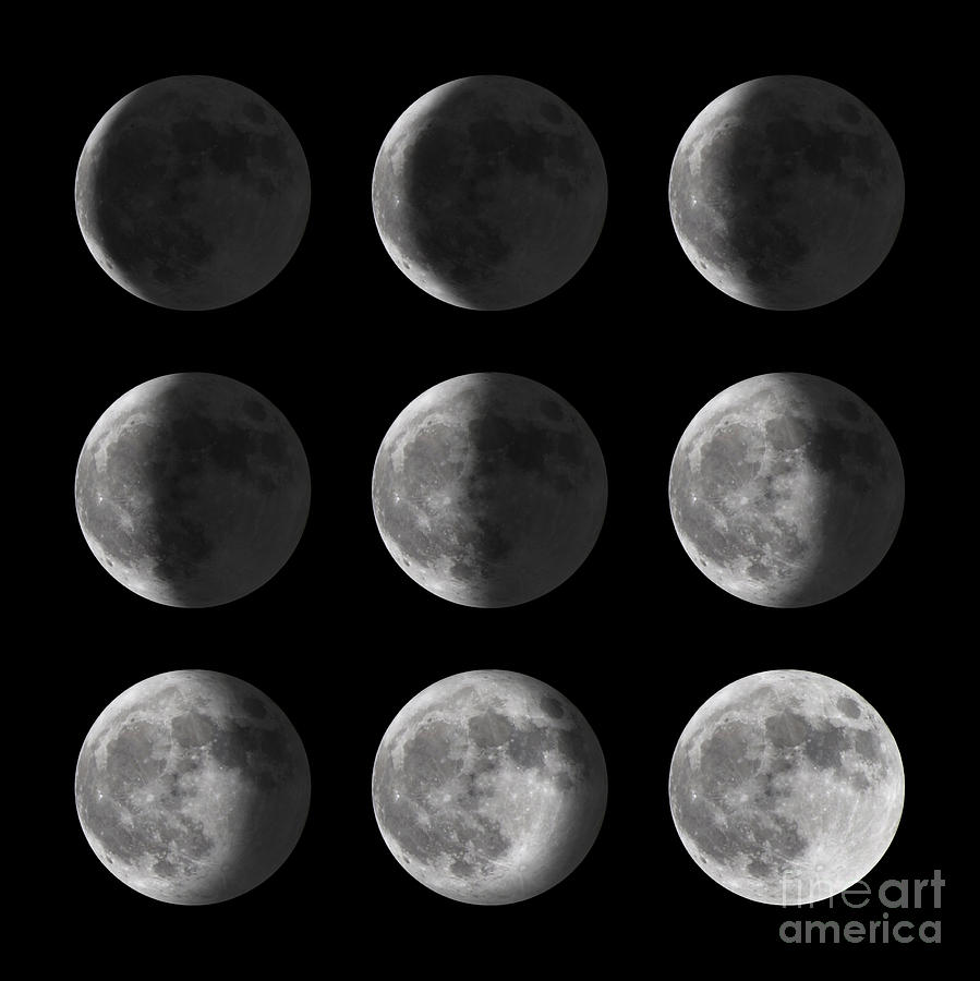 Half Photograph - Set Of Moon Phases For New, Half, And by David Carillet