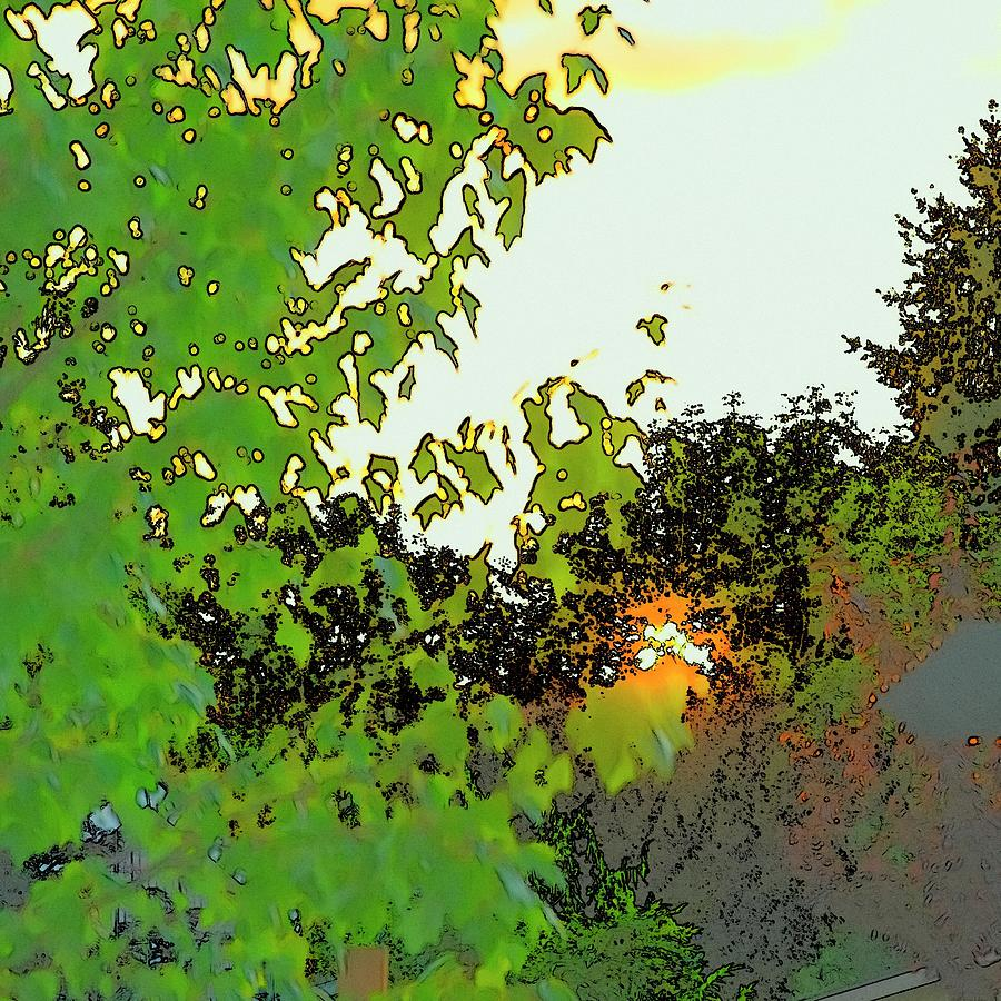 Setting Sun And Maple Color Sketch by Jerry Sodorff