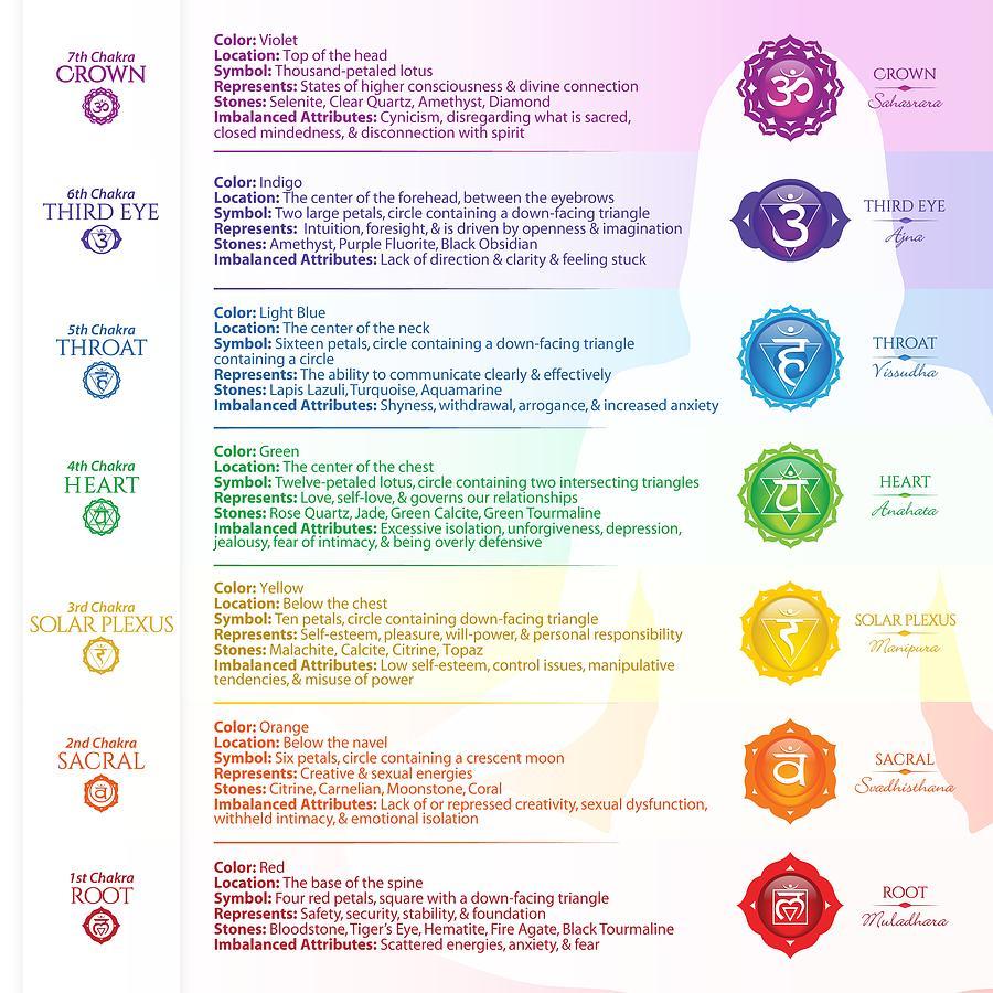 Seven Chakra Poster Chart by Serena King