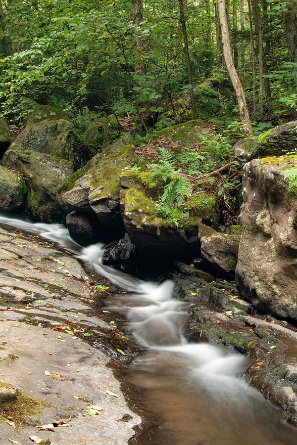 Seven Tubs Mountain Stream by Kristia Adams