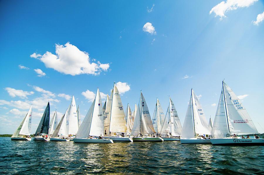 Several Sailboats Photograph by Helena Wahlman