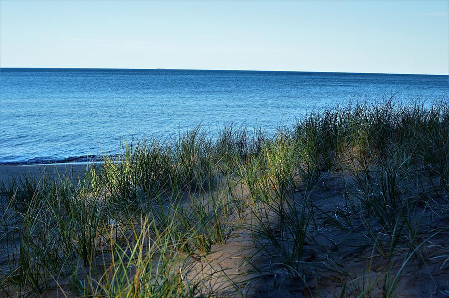 Shade On Lake Superior Photograph
