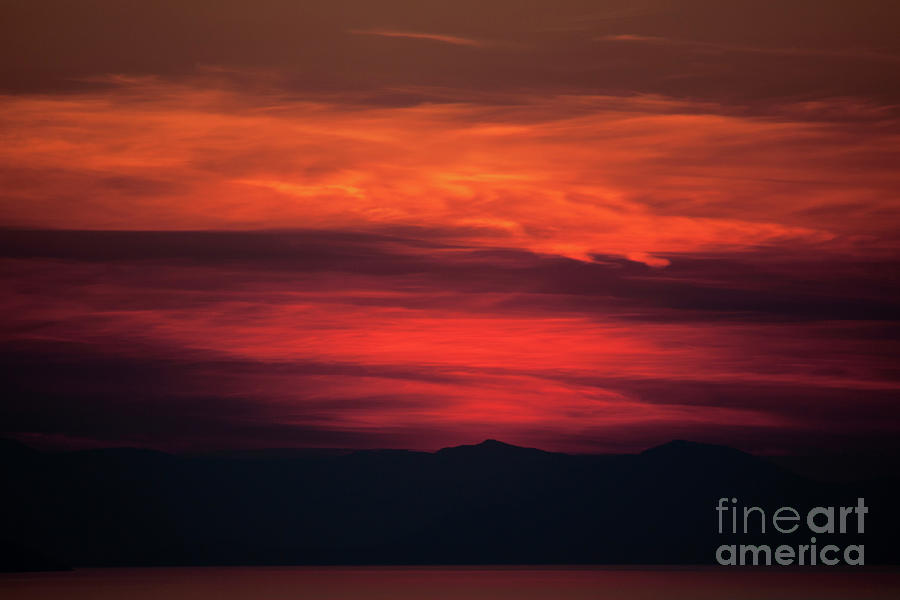 Shades of Red by Ana Mireles