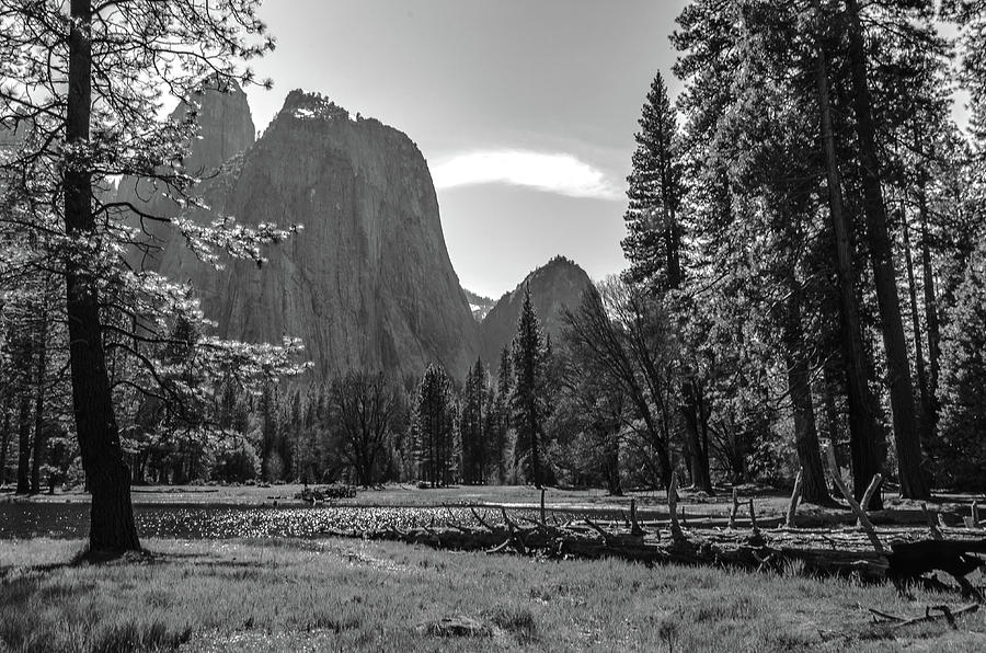 Shadows of the Yosemite Valley by Douglas Wielfaert