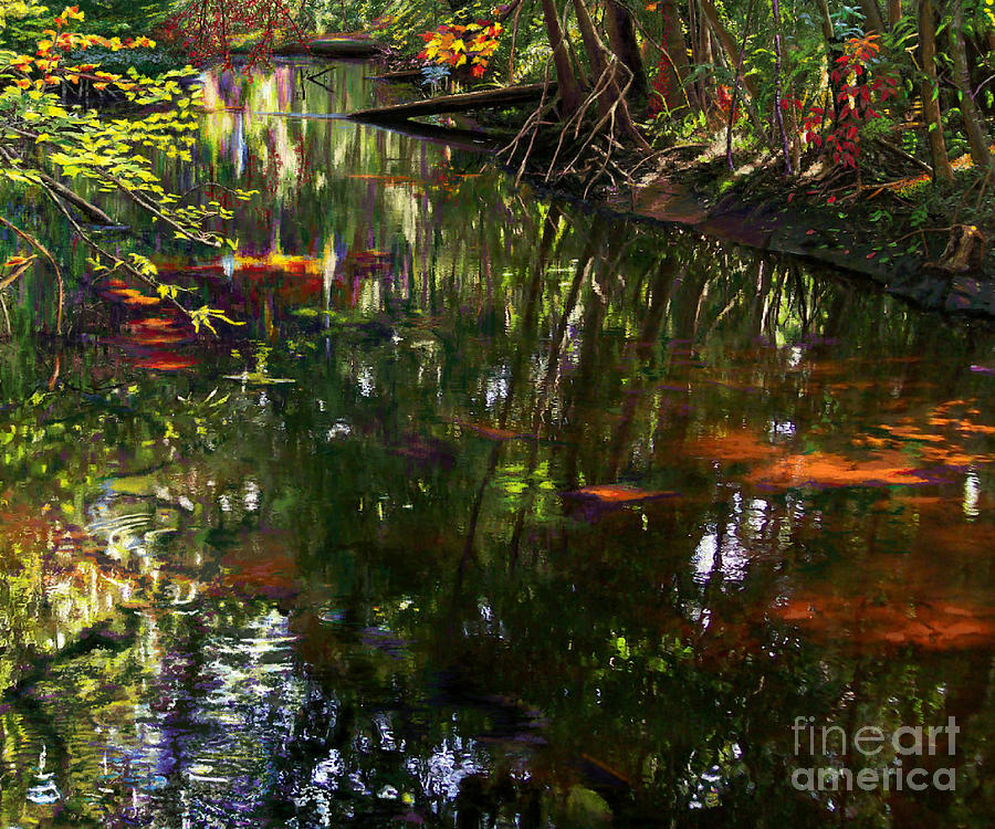 Shady River Reflections by Jackie Case