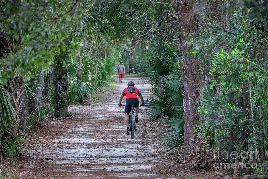 Share the Trail by Tom Claud