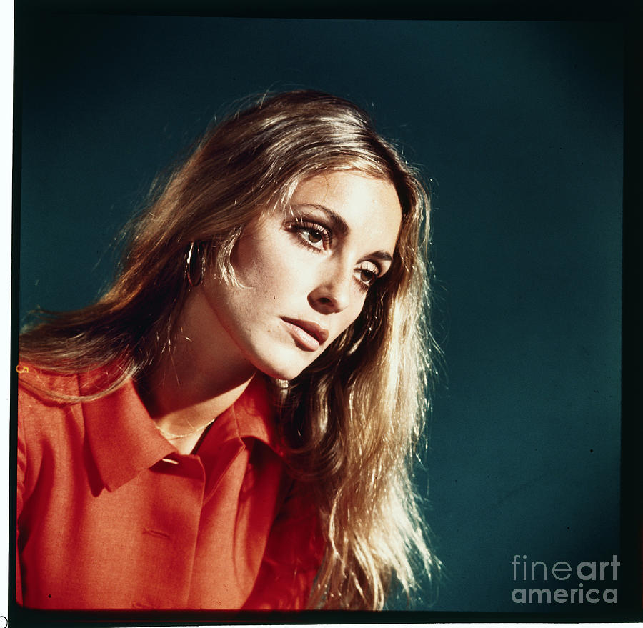 Sharon Tate With Head Tilted Photograph by Bettmann
