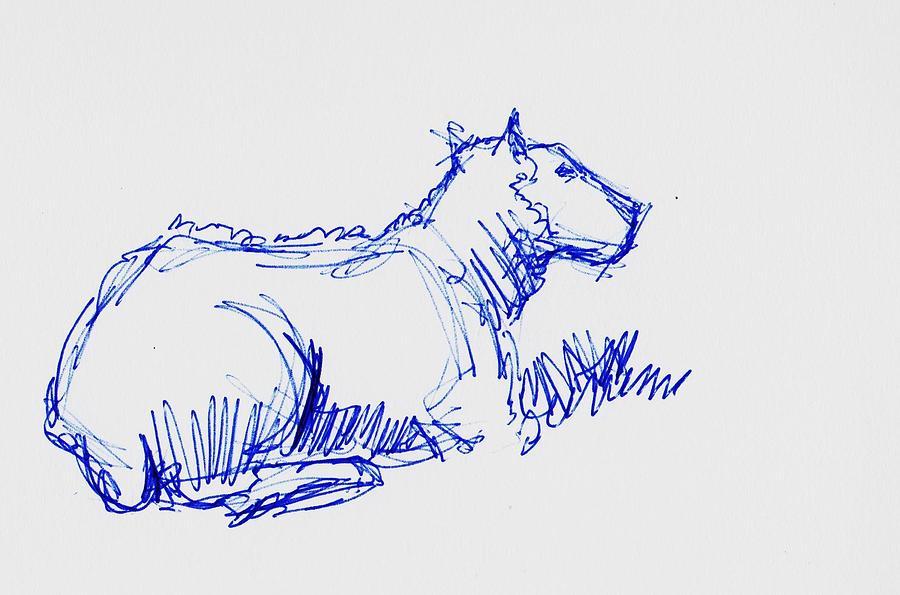 Sheep drawing - biro sketch en plein air by Mike Jory