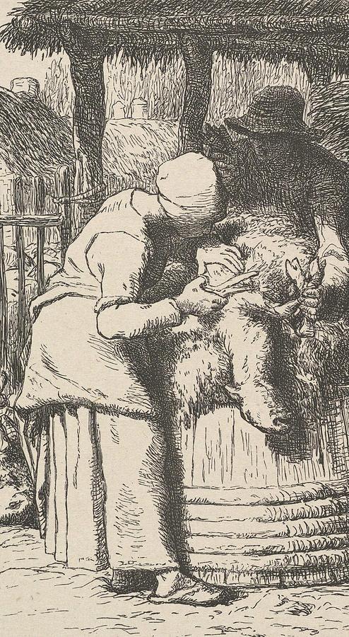 Sheepshearing by Jean-Francois Millet