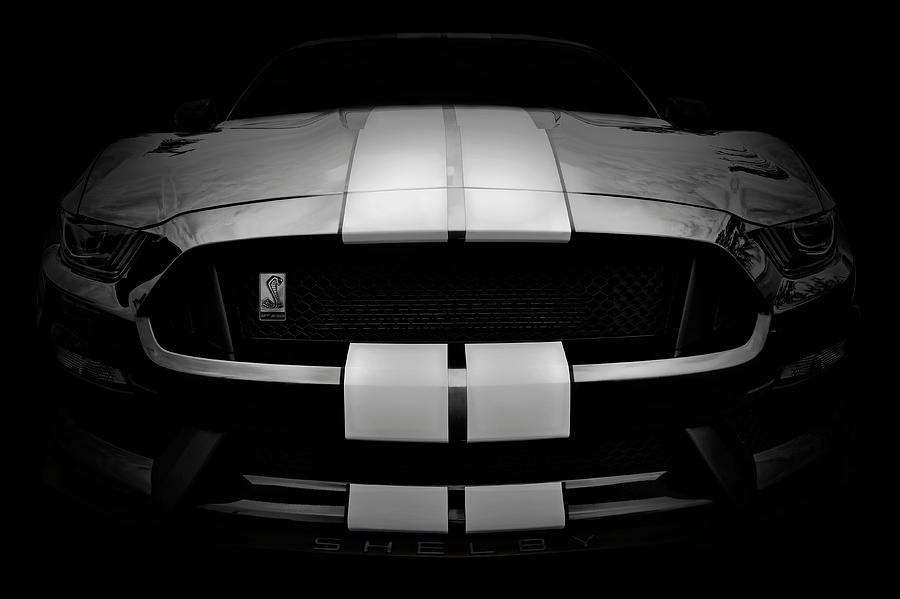 Shelby Mustang GT350 - American Muscle Car - Ford Mustang by Jason Politte