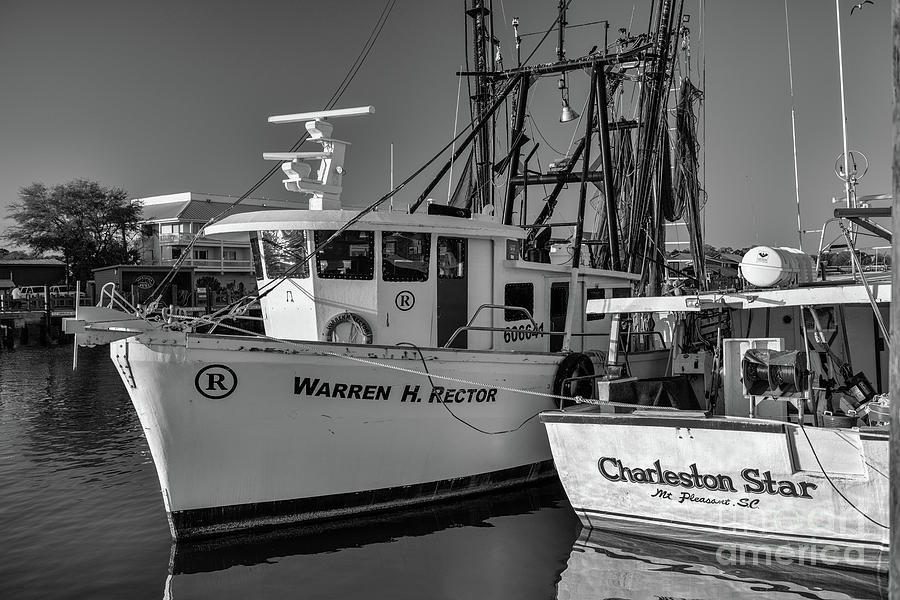 Shem Creek - Working Boats Photograph