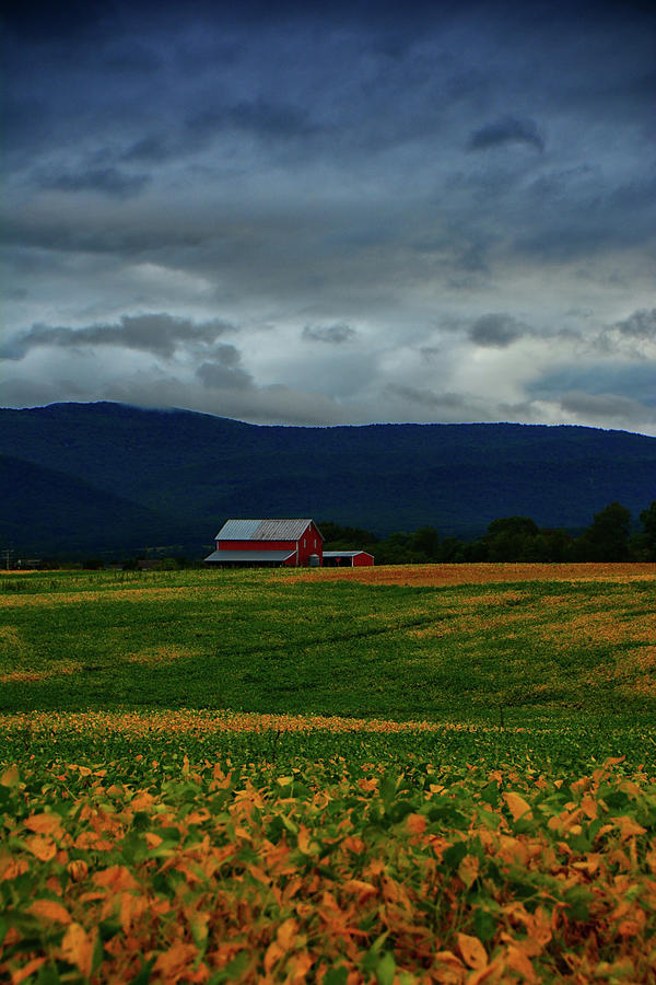 Shenandoah Valley Farm by Raymond Salani III