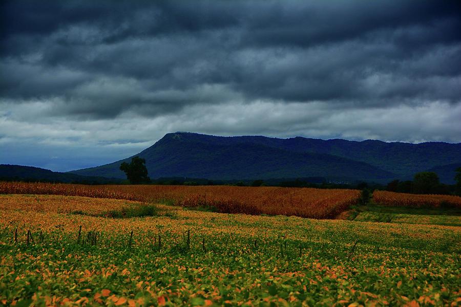 Shenandoah Valley Farmland by Raymond Salani III
