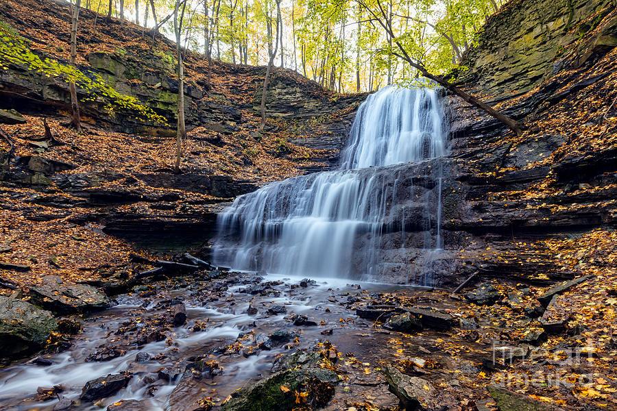 Sherman Falls by Alma Danison