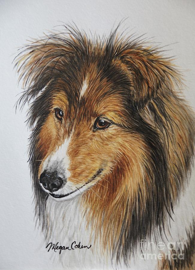Shetland Sheepdog Painting - Shetland Sheepdog by Megan Cohen