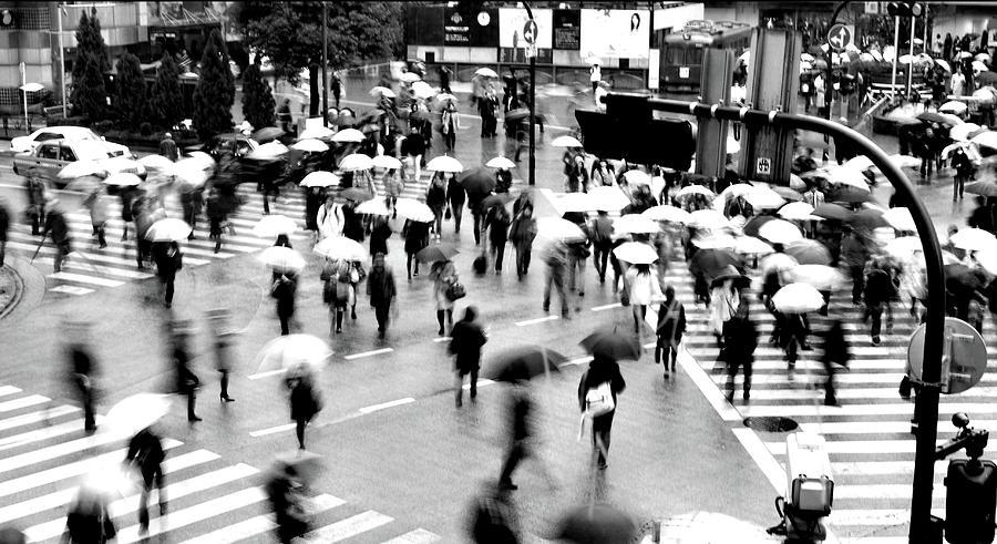 Shibuya Scramble Crossing Photograph by Fabio Cremasco