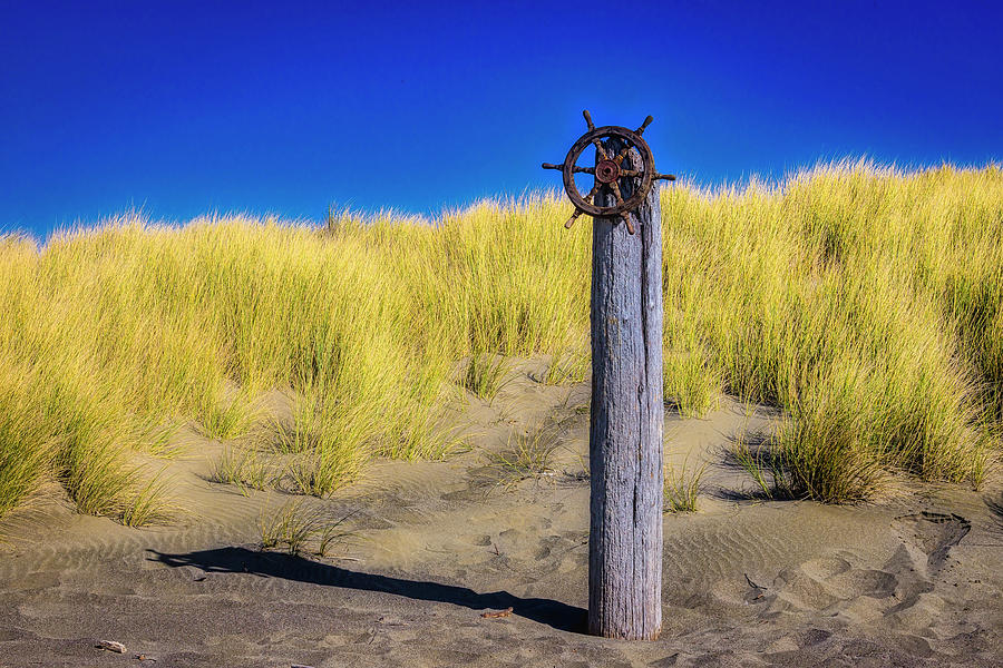 Ships Photograph - Ships Wheel On Drift Wood Log by Garry Gay