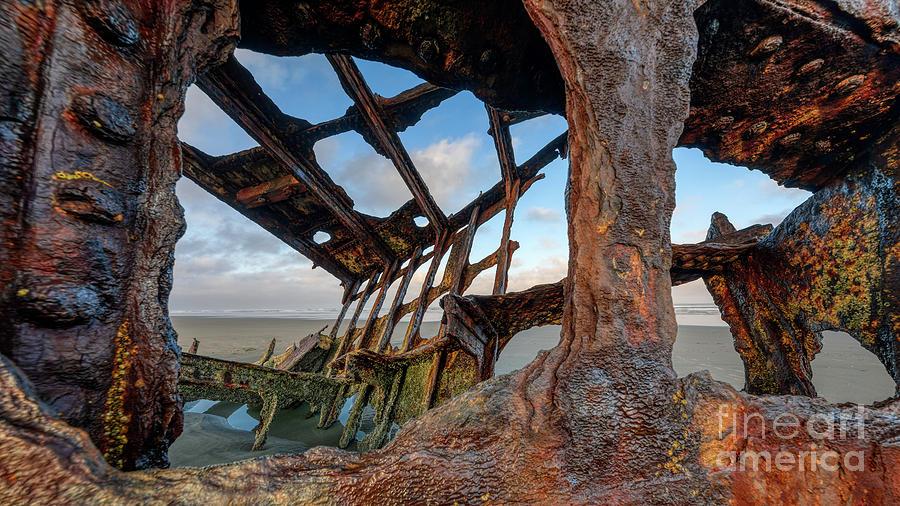 SHIPWRECKED by Doug Sturgess
