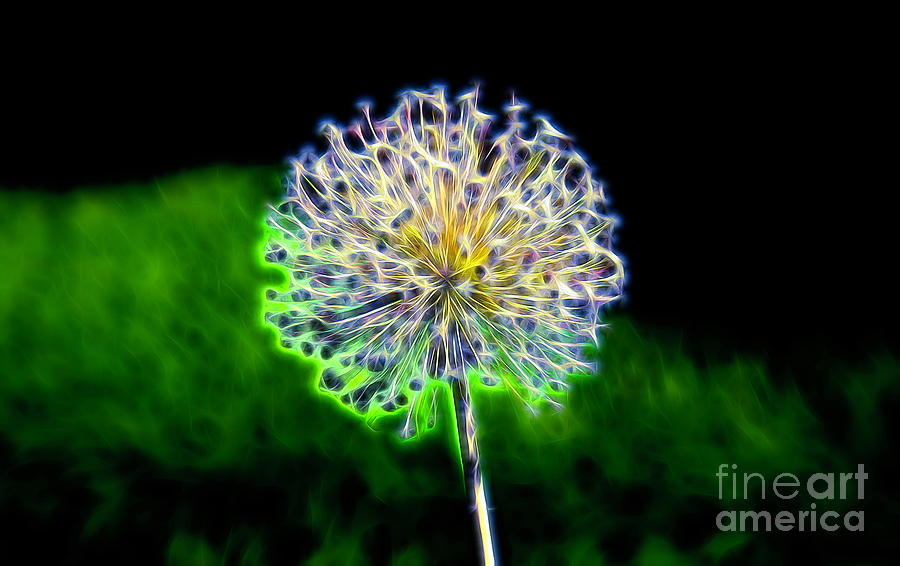 Shocking Green Allium by Karen Silvestri