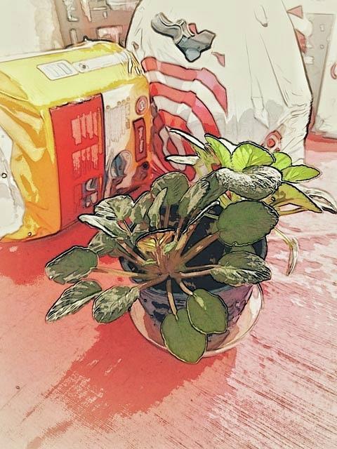 Shopping Day by Winnie Chrzanowski