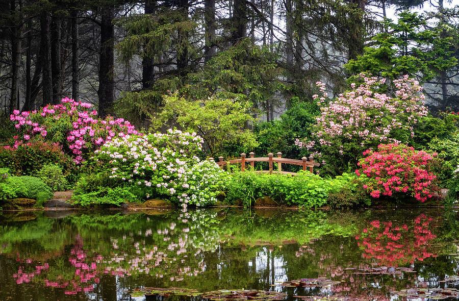 Shore Acres Botanical Gardens by Carolyn Derstine