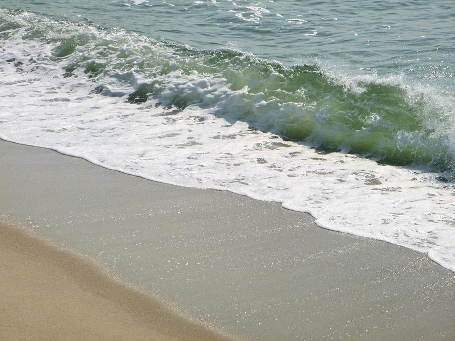 Shoreline by Ellen Paull
