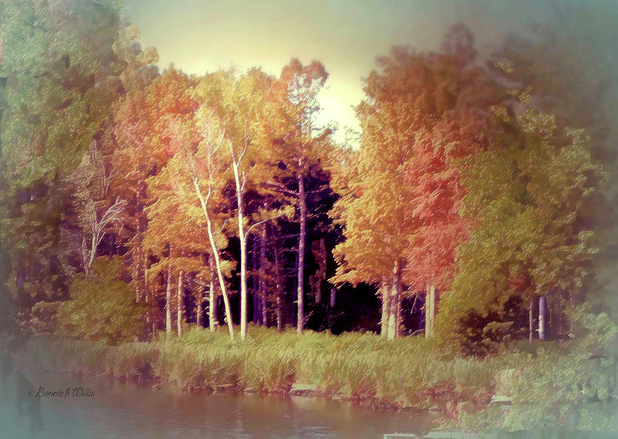 Shores of Reelfoot Lake by Bonnie Willis