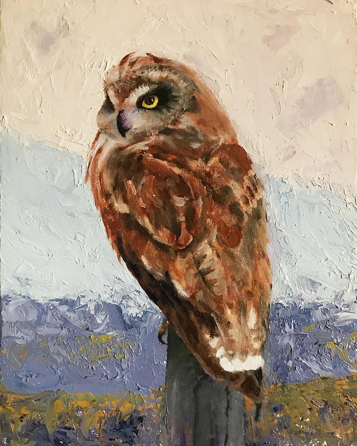 Short-eared Owl by Marsha Karle