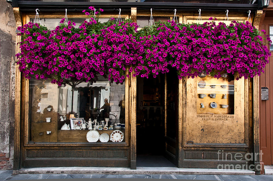 Slovenia Photograph - Showcase Full Of Purple Flowers In by Cmartinezcano