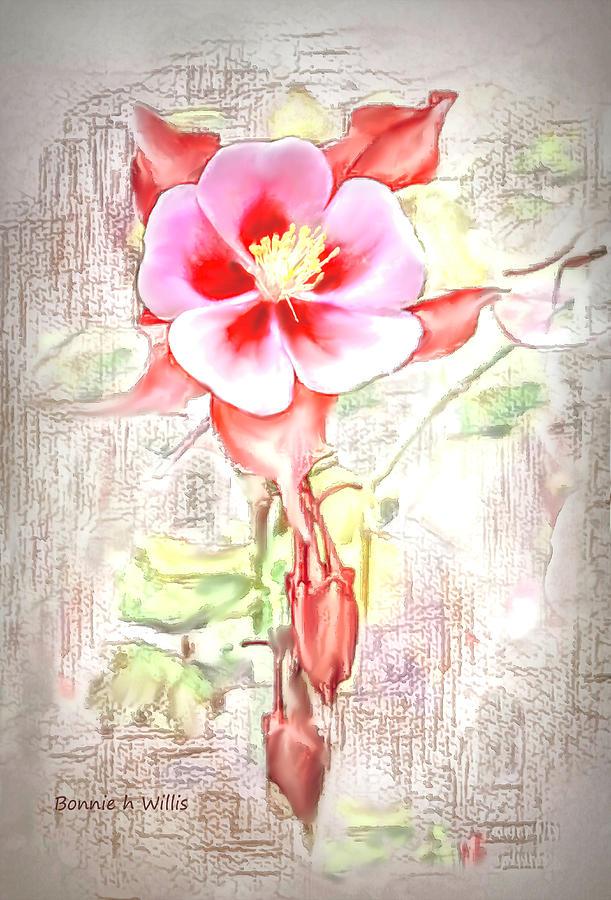 Showy Aqualigia flower by Bonnie Willis