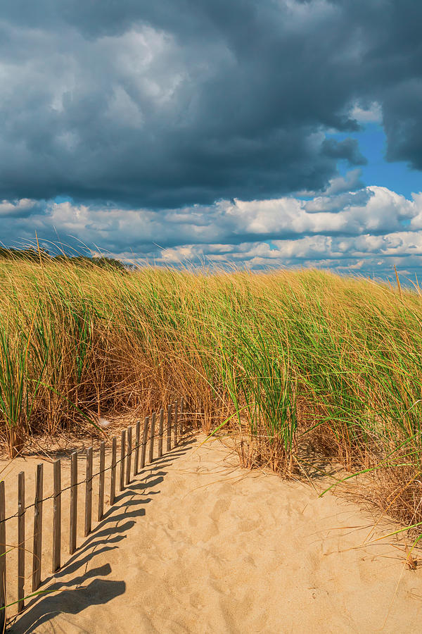 Shrinking Fence Path To Dune Grass On Cloudy Day by Gary Slawsky