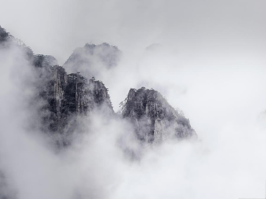 Shrouded In Mist Photograph By Usha Peddamatham