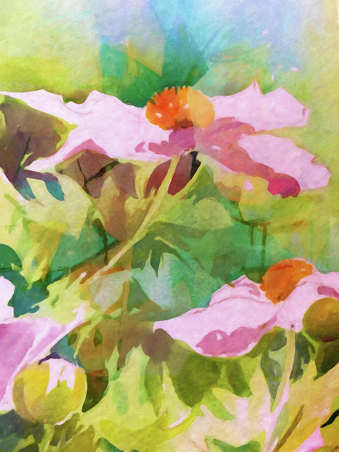 Shrub Poppies by Lutz Baar