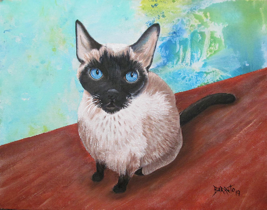 Siamese Cat by Gloria E Barreto-Rodriguez