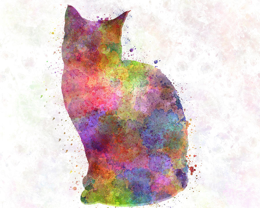 Siamese cat in watercolor by Pablo Romero