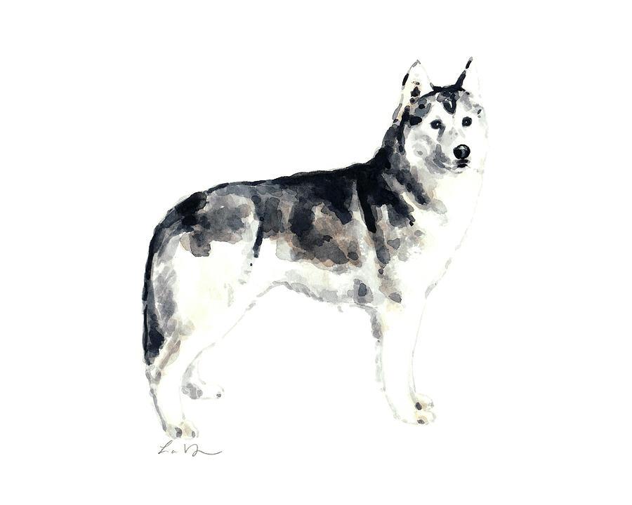 Siberian Husky Painting - Siberian Husky Dog by Laura Row