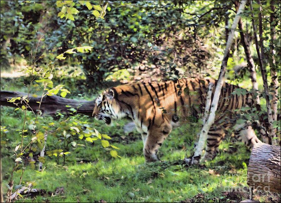 Siberian Tiger Digital Art by Sandra Huston