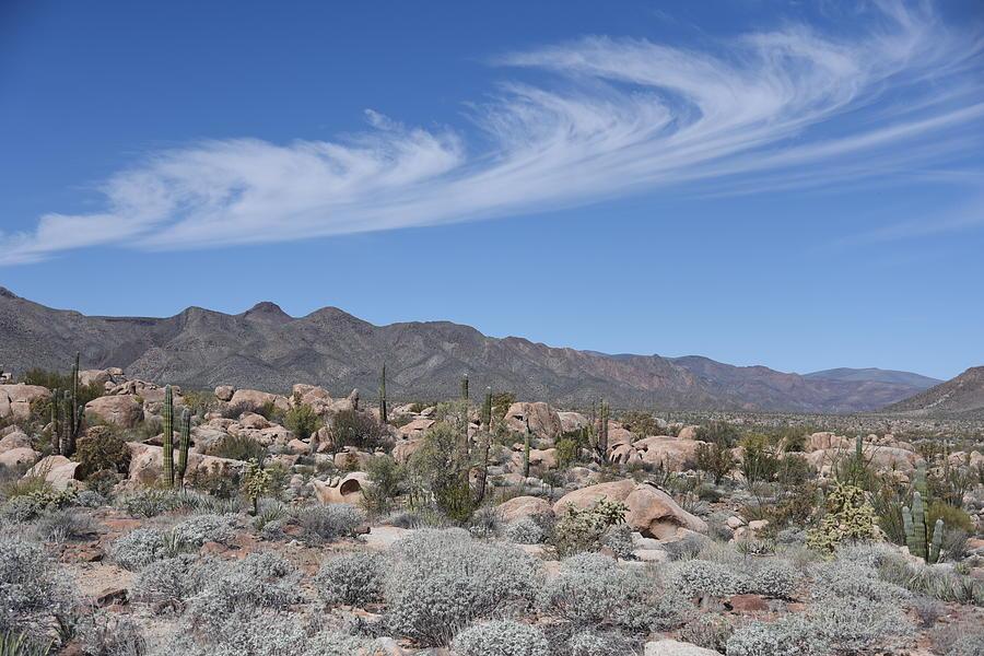 Sierras by Lisa Dunn