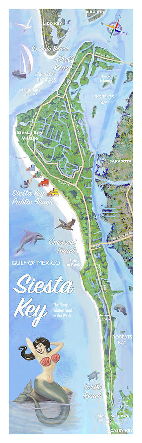 Siesta Key Illustrated Map by Shawn McLoughlin