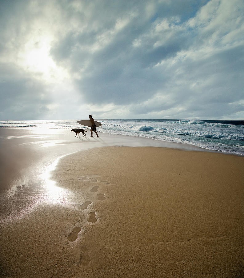Silhouette Of Surfer With Dog Walking Photograph by Ed Freeman