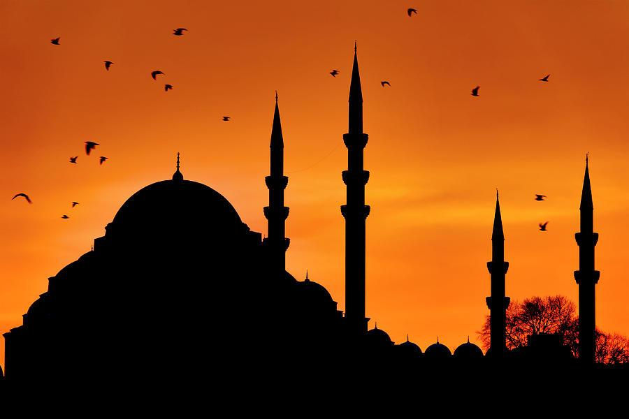 Silhouette of the Suleymaniye Mosque by Fabrizio Troiani
