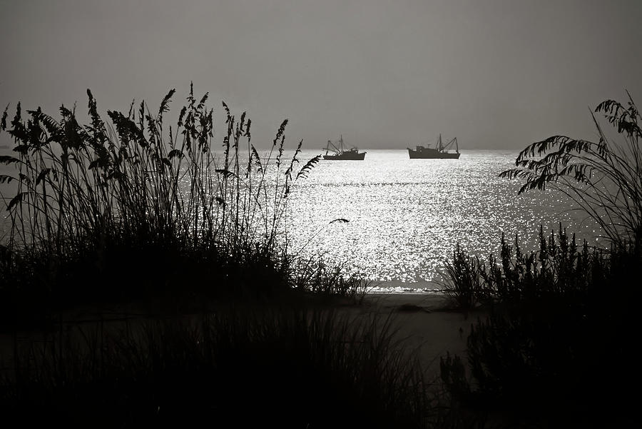 Silhouettes Of Sea Oats And Shrimp Boats Photograph by Joseph Shields