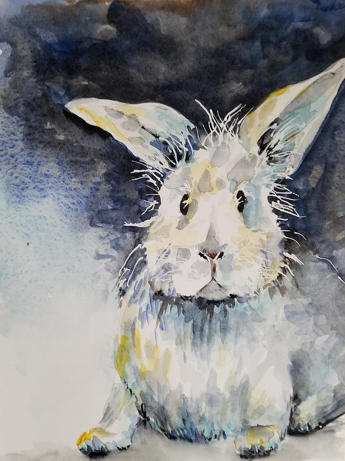 Silly Rabbit by Lettie Neuhauser-MacLachlan