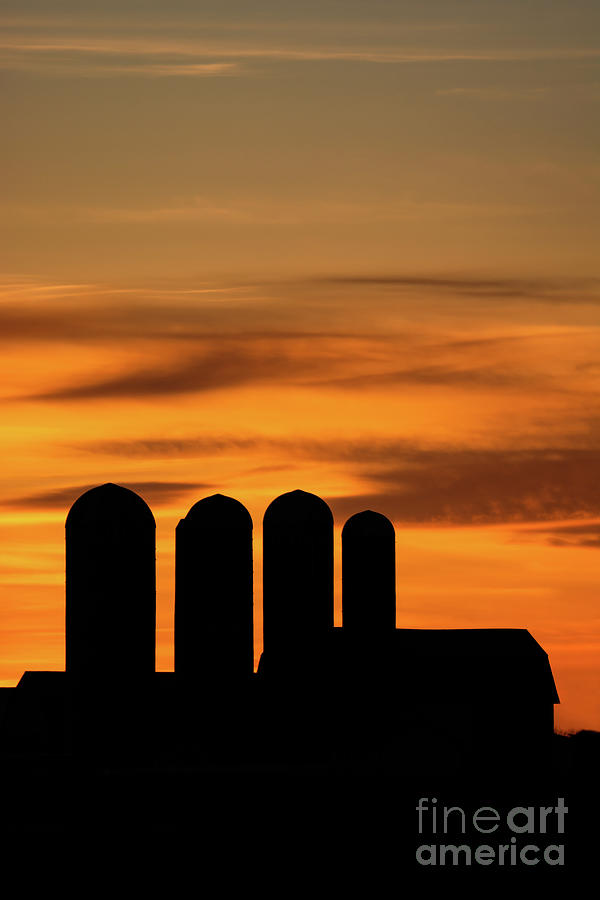 Silo Silhouettes at Sunset by Jackie Johnson