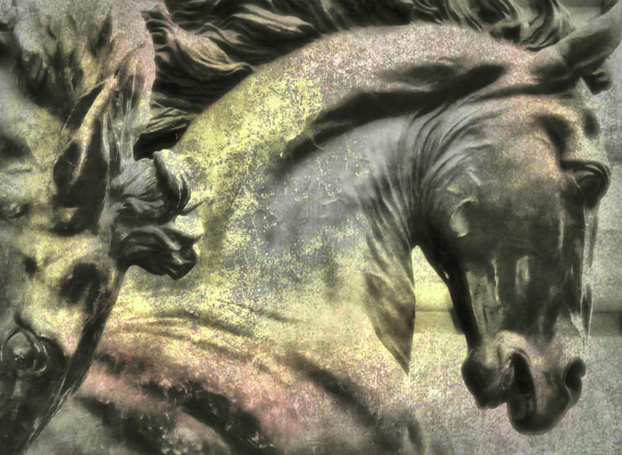 Horse Photograph - Silver And Gold  Art by JAMART Photography