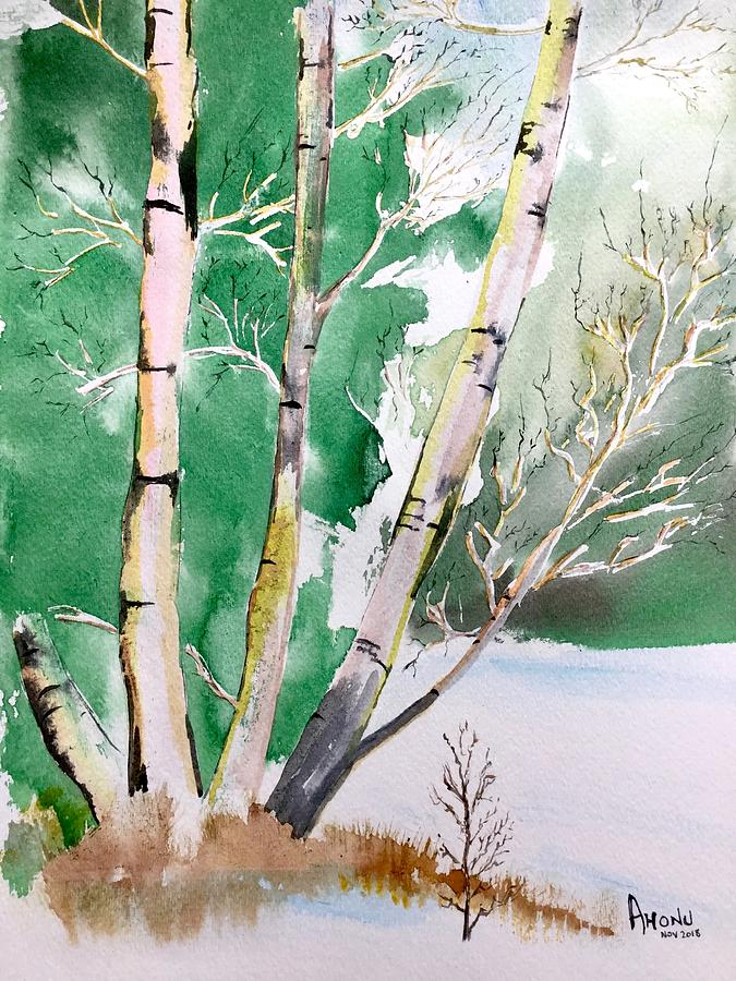 Silver Birch In Snow by AHONU